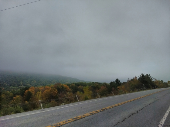 Fog and the road on the way to Cayuga